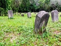 In pieno del cimitero verde Fotografia Stock