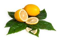 In pieno e sezione trasversale del limone giallo Immagine Stock Libera da Diritti