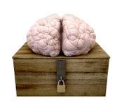 Piense fuera del cerebro del rectángulo ilustración del vector