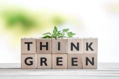 Piense la muestra verde con una planta Imagenes de archivo