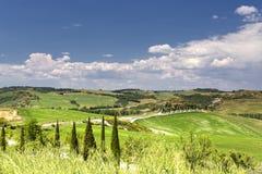 Pienza hills Stock Photography