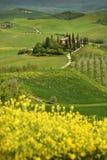Pienza, Italia - 24 aprile 2018: Belvedere famoso di Podere nella stagione primaverile, nel cuore della Toscana ` Orcia di Val d fotografie stock libere da diritti