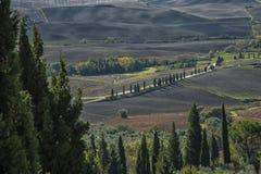 Pienza - la Toscana/Italia, il 30 ottobre 2016: Paesaggio scenico della Toscana con Rolling Hills e le valli in autunno, vicino a Immagine Stock