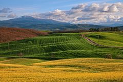 Pienza, Siena, Tuscany, Italy: landscape of the countryside royalty free stock images