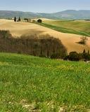 PIENZA, TOSCANA/ITALIA - 31 MARZO 2017: bello paesaggio della Toscana, poca cappella di Madonna di Vitaleta, Pienza, Siena Immagine Stock