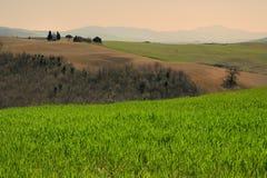PIENZA, TOSCANA/ITALIA - 31 MARZO 2017: bello paesaggio della Toscana, poca cappella di Madonna di Vitaleta, Pienza, Siena Fotografie Stock Libere da Diritti