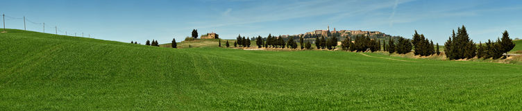 PIENZA, TUSCANY / ITALY - MAR 31, 2017: beautiful landscape, with green rolling hills and tuscan cypress Royalty Free Stock Image