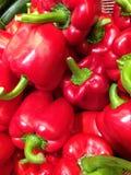 pieprz czerwone bell Zdjęcie Stock