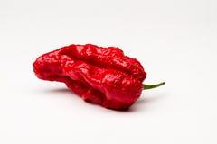 pieprz czerwone gorące Obrazy Stock