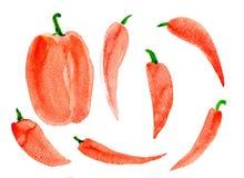 Pieprzowa słodka duża czerwień Obrazy Stock