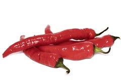 Pieprzowa zbożowa chili czerwień, czerń, białe pikantność, pławik w srebnym pucharze na desce na widok pojedynczy białe tło obraz royalty free