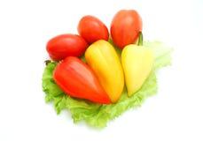 pieprzowi pomidory Zdjęcie Stock
