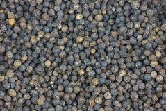 Pieprzowy czerń suszy wiele peppercon tła pikantność bazę kulinarną Obraz Stock