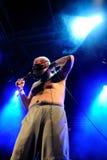 Pieprzy Up, akceptowany punkowy zespół, wykonuje przy Heineken Primavera dźwięka 2013 festiwalem Obraz Royalty Free