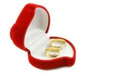 pierścień Obrazy Stock