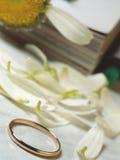 pierścień na ślub Zdjęcie Stock