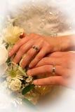 pierścienie miłości. Obrazy Stock