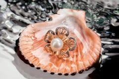 Pierścionek Z perłą W Dennym Shell Zdjęcia Royalty Free