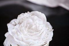 Pierścionek zaręczynowy w wzrastał zdjęcie royalty free