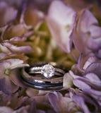 pierścionków target1767_1_ Zdjęcie Stock