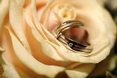 pierścionków target833_1_ Obraz Royalty Free