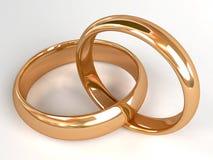 pierścionki dwa poślubia Zdjęcie Stock