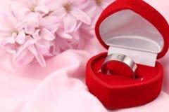 pierścionku zaręczynowy titanium Obrazy Stock