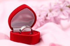 pierścionku zaręczynowy titanium Fotografia Stock