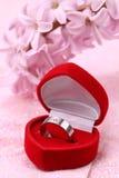 pierścionku zaręczynowy titanium Zdjęcie Royalty Free