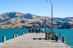 Pier in Akaroa Royalty-vrije Stock Fotografie