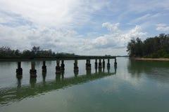 Pier binnen een Mangrovebos onder de Bewolkte Hemel Royalty-vrije Stock Afbeeldingen