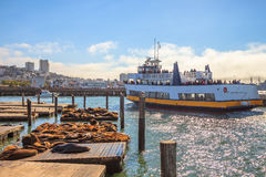 Pier 39 Boat trip Royalty Free Stock Photography