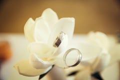 pierścienie Zdjęcie Royalty Free