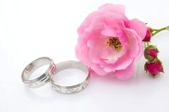 pierścionków target1054_1_ Zdjęcie Stock