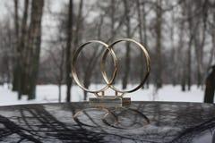 pierścionków target1363_1_ Zdjęcia Royalty Free