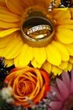 pierścionków target1393_1_ Zdjęcia Royalty Free