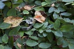 pierścionków target140_1_ Obraz Royalty Free
