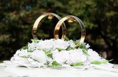pierścionków target1432_1_ Obrazy Stock