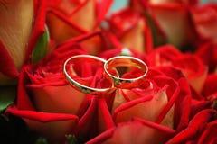 pierścionków target1592_1_ Zdjęcie Stock