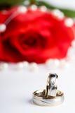 pierścionków target1723_1_ Fotografia Royalty Free