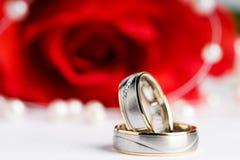 pierścionków target1768_1_ Zdjęcie Royalty Free