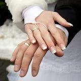 pierścionków target1860_1_ Zdjęcie Stock