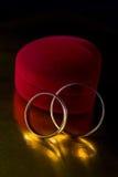 pierścionków target2152_1_ Obrazy Royalty Free