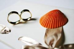 pierścionków target222_1_ Obrazy Stock