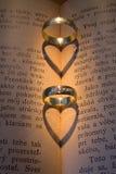 pierścionków target2370_1_ Zdjęcie Stock