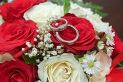 pierścionków target2438_1_ Obraz Royalty Free