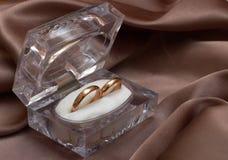 pierścionków target476_1_ Obraz Royalty Free