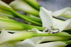 pierścionków target633_1_ Obrazy Royalty Free