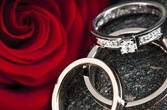 pierścionków target636_1_ Zdjęcia Royalty Free