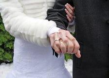 pierścionków target883_1_ Obraz Royalty Free